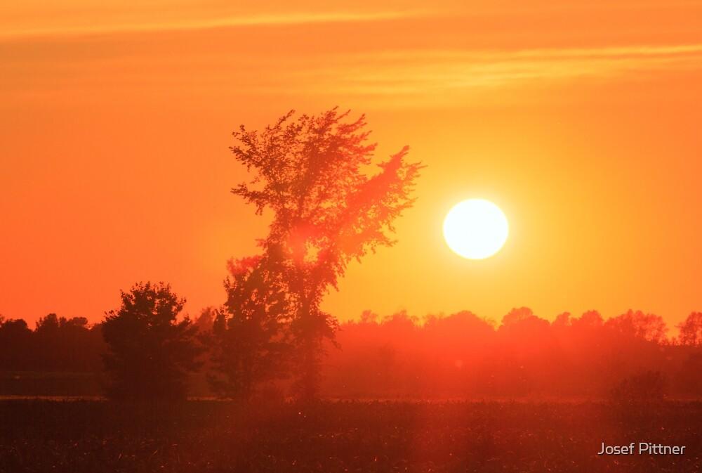 The Setting Sun - Ottawa, Canada by Josef Pittner
