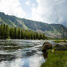 A River Runs Through It by Suzi Harbison