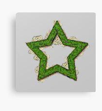 Fruit & Vegetable Green Star Canvas Print