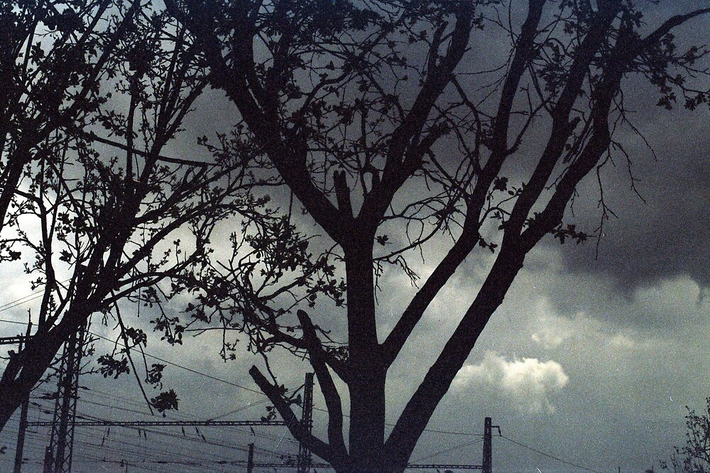 dark & dark by verivela