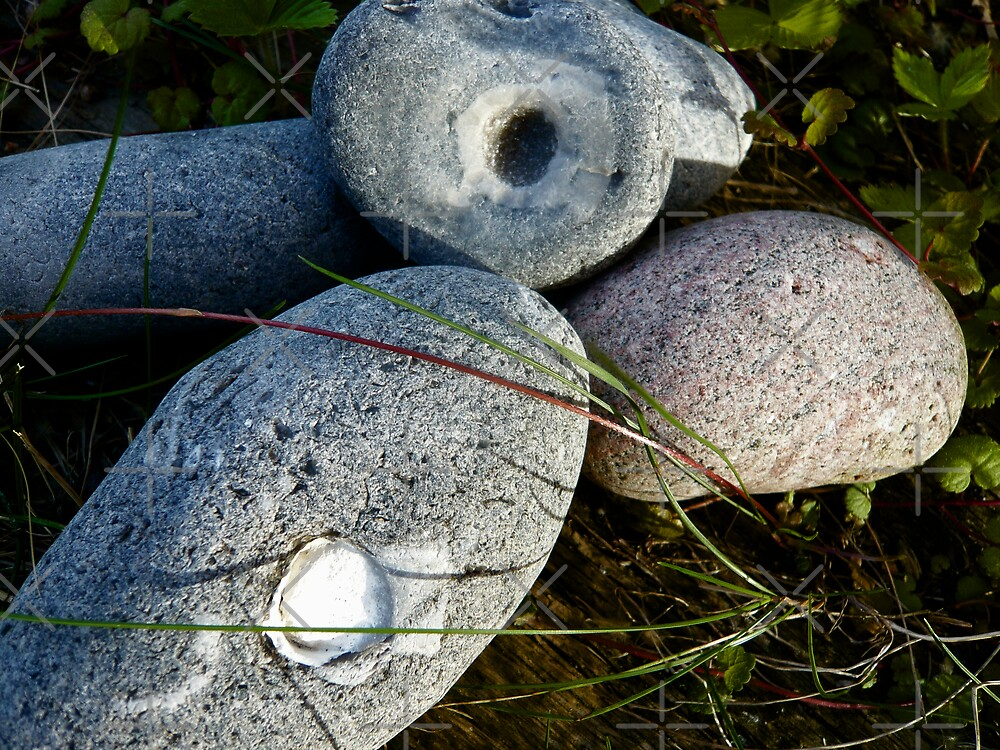 Stones with surprices by Hekla Hekla