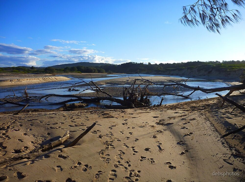 Low Tide...Station Ck by debsphotos