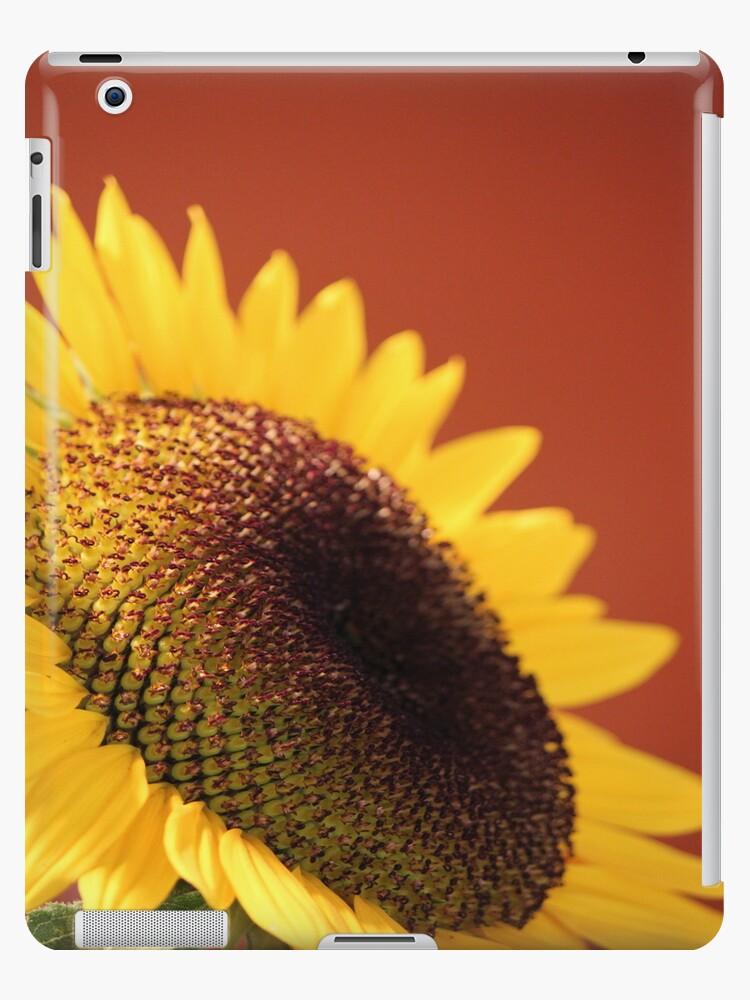 Sunflower by Tanya Shockman