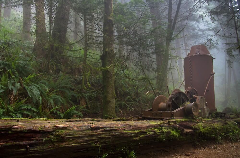 Steam Donkey - West Coast Trail, Vancouver Island, Canada by Phil McComiskey