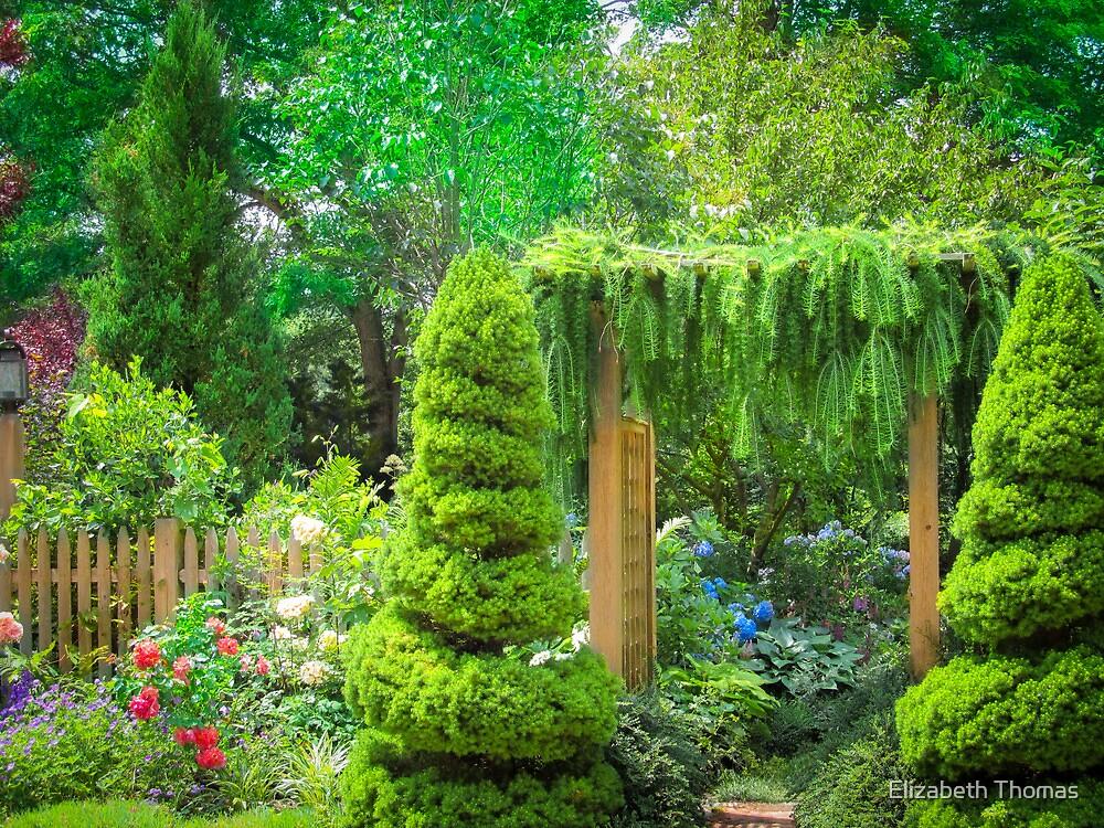 A Garden Oasis on Cape Cod by Elizabeth Thomas
