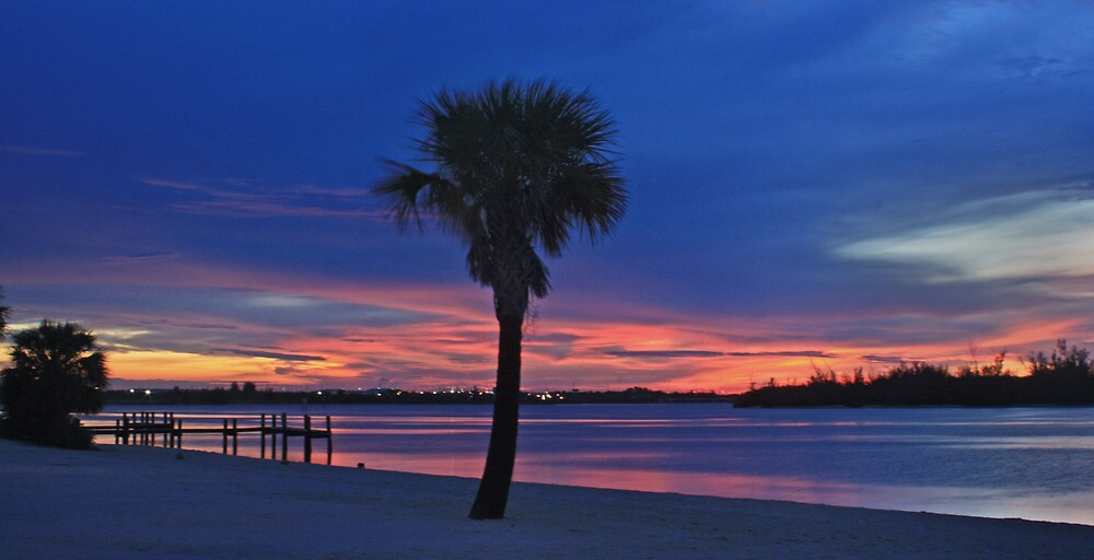 sunset palm by cliffordc1