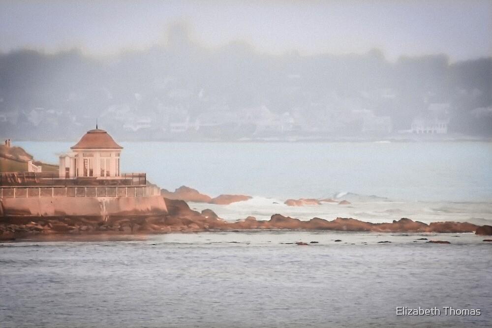 Newport, Rhode Island Coastline by Elizabeth Thomas