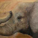 Elephant by Liz Pearson