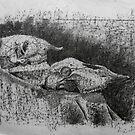 Skull Still Life by Liz Pearson