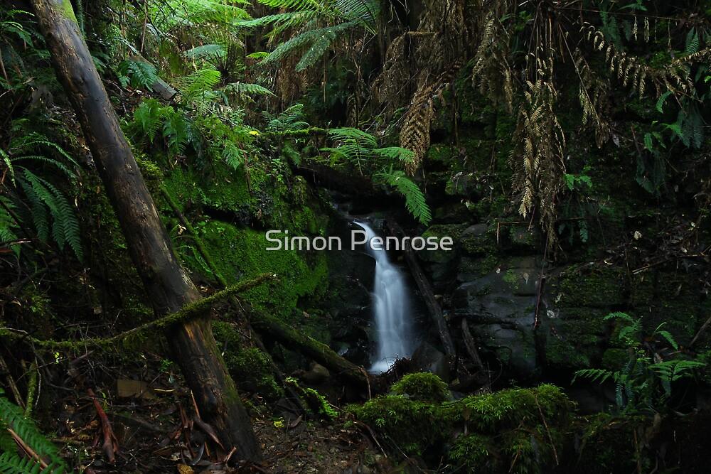 A small drop by Simon Penrose