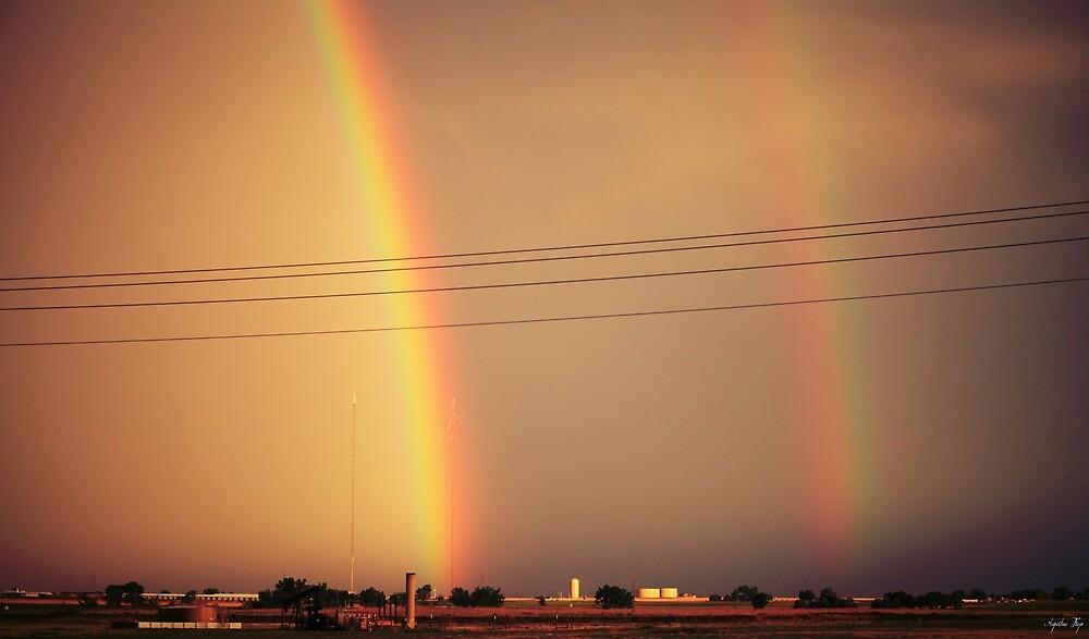 Dos Rainbows by Augustina Trejo