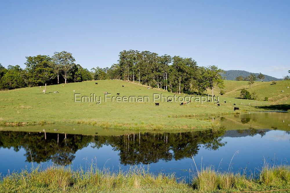 Dam Reflections by Emily Freeman Photography