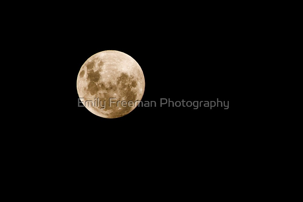 Full Moon by Emily Freeman Photography