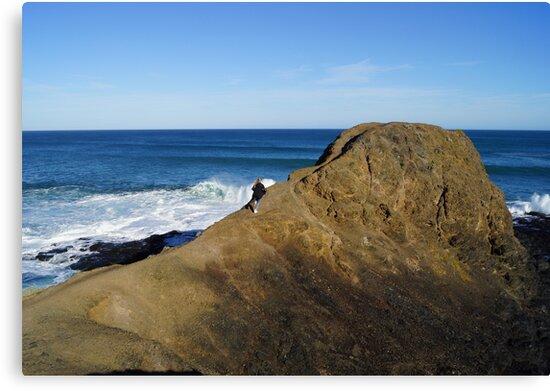 Flinders Blowhole 2 by Lauren Eagle