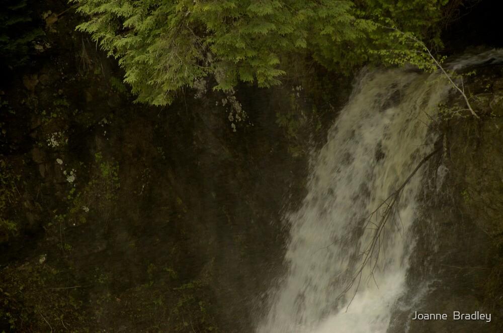 Plaisance Falls by Joanne  Bradley