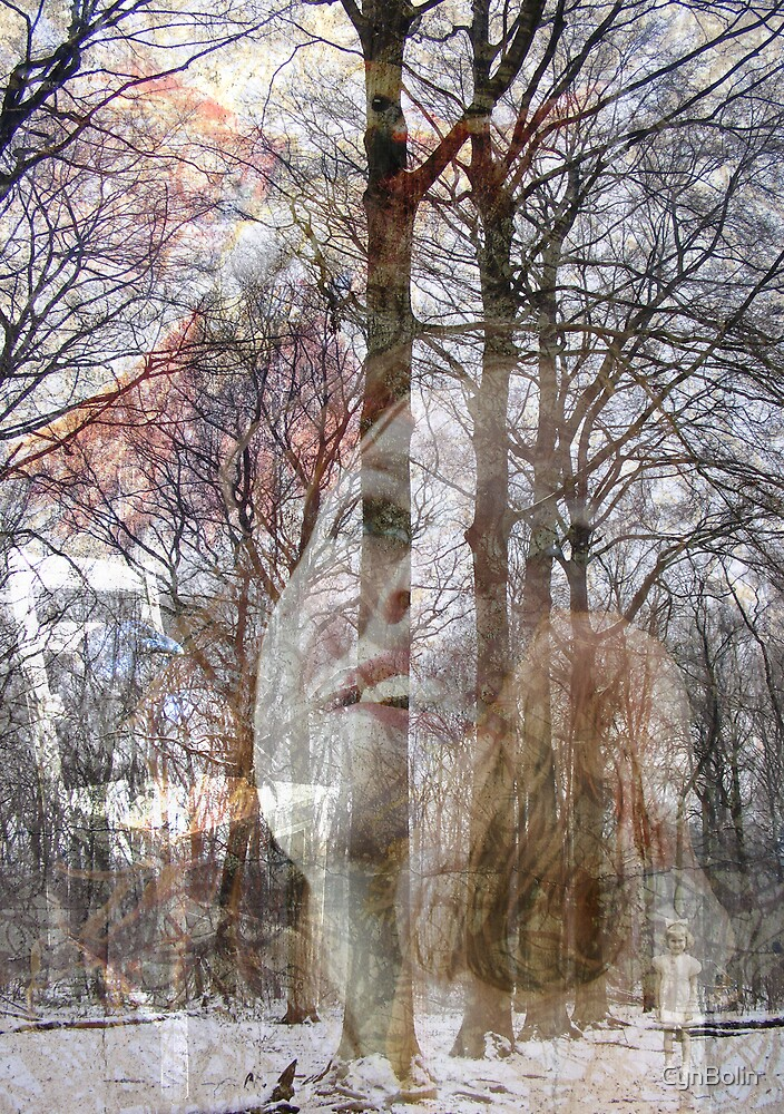 Norwegian Woods by CynBolin
