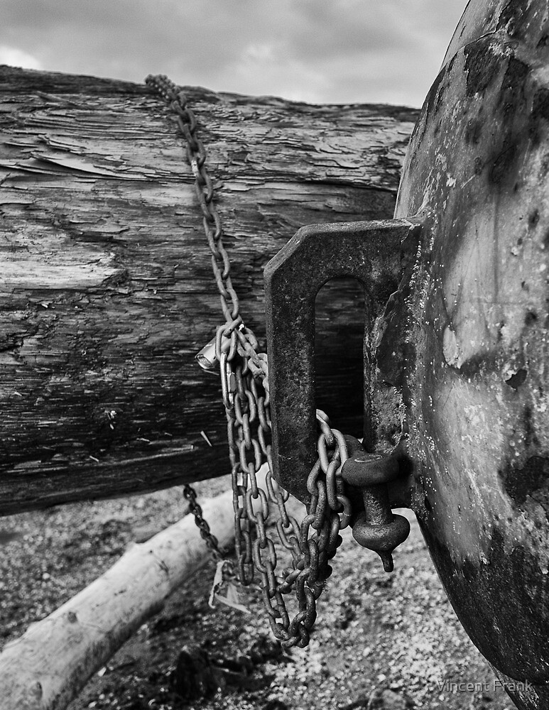 Chained Mooring Buoy On Beach - Ruston Way, WA - U.S.A. by Vincent Frank