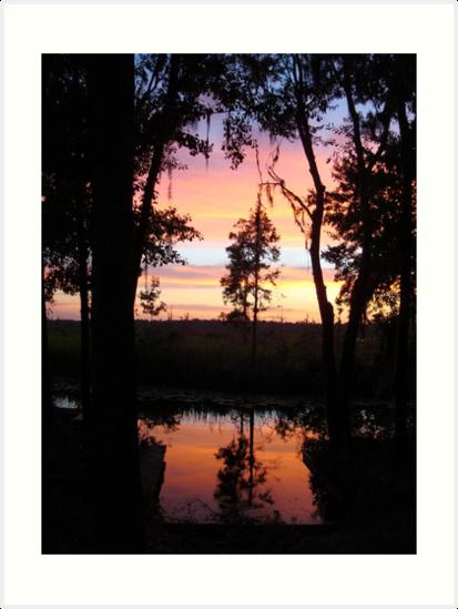 JULY SUNSET ON ECONFINA CREEK by May Lattanzio