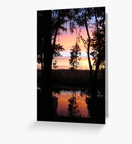 JULY SUNSET ON ECONFINA CREEK Greeting Card