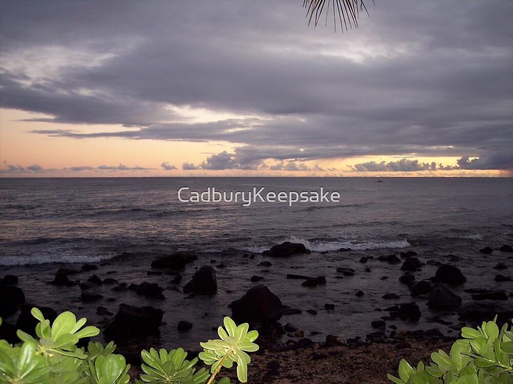 Hawaiian Sunset by CadburyKeepsake