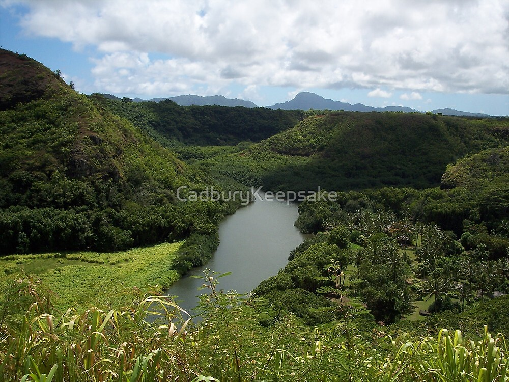 Lush Greenery of Hawaii by CadburyKeepsake