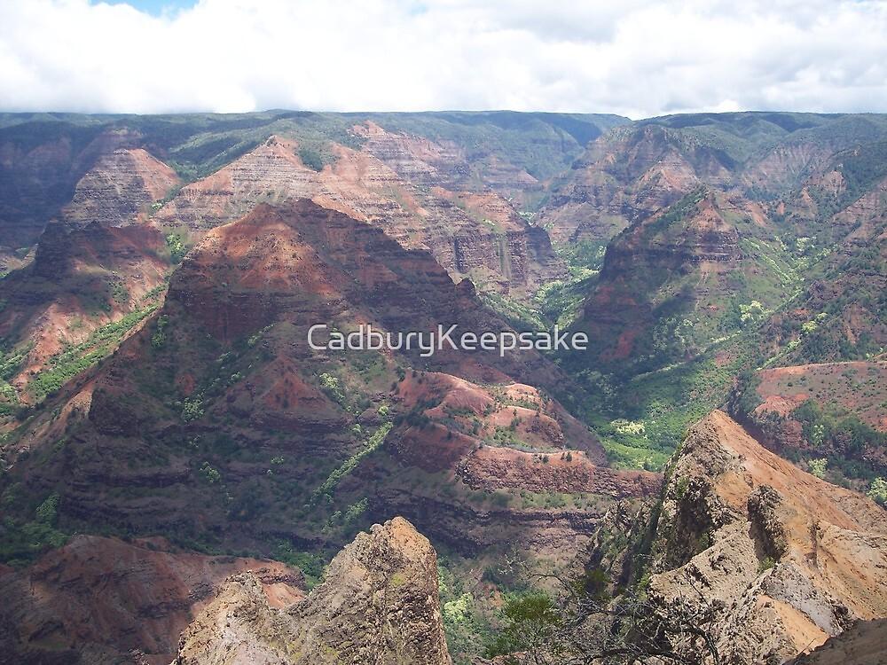 Waimia Canyon in Kauai, Hawaii by CadburyKeepsake