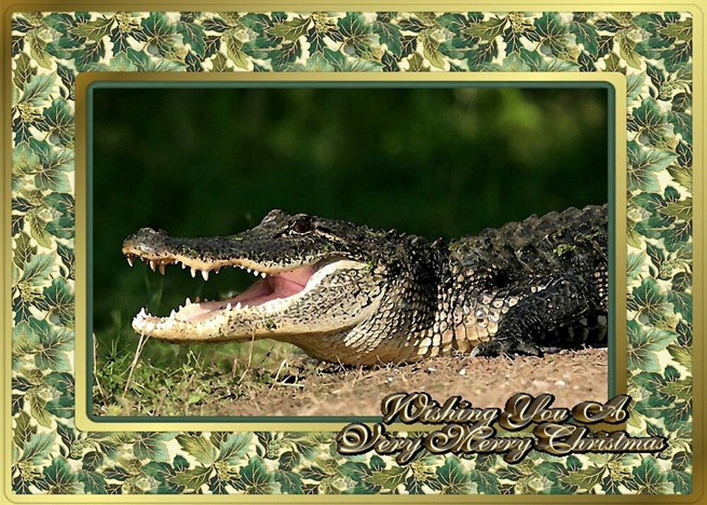 Alligator Blank Christmas Greeting Card by Oldetimemercan