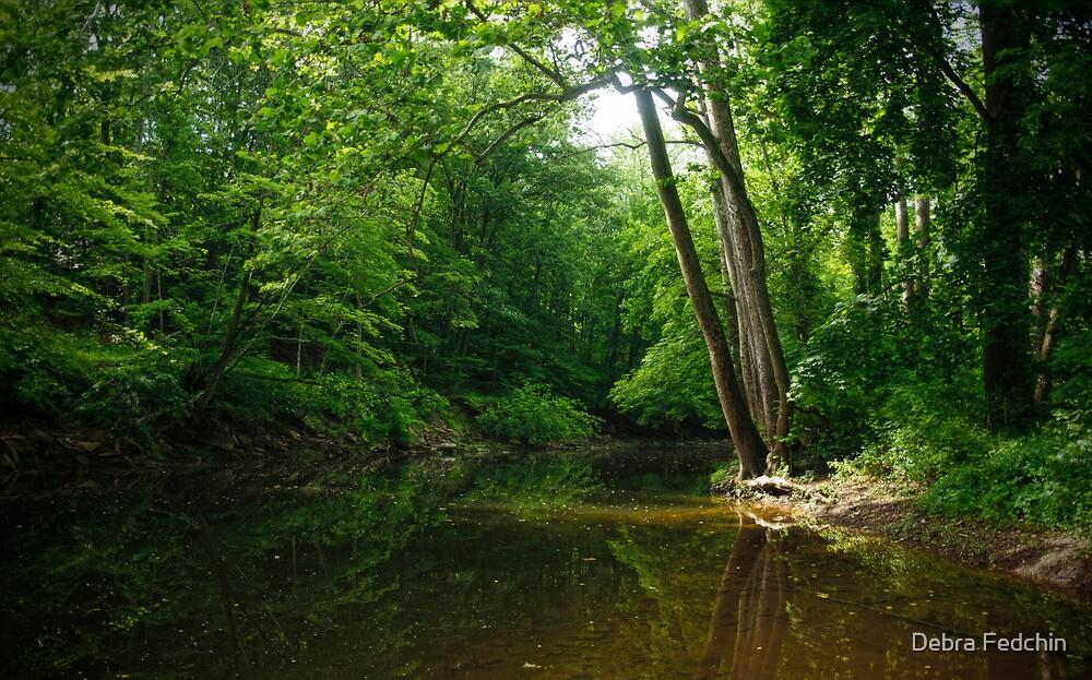 The Wickecheoke Creek # 1 by Debra Fedchin