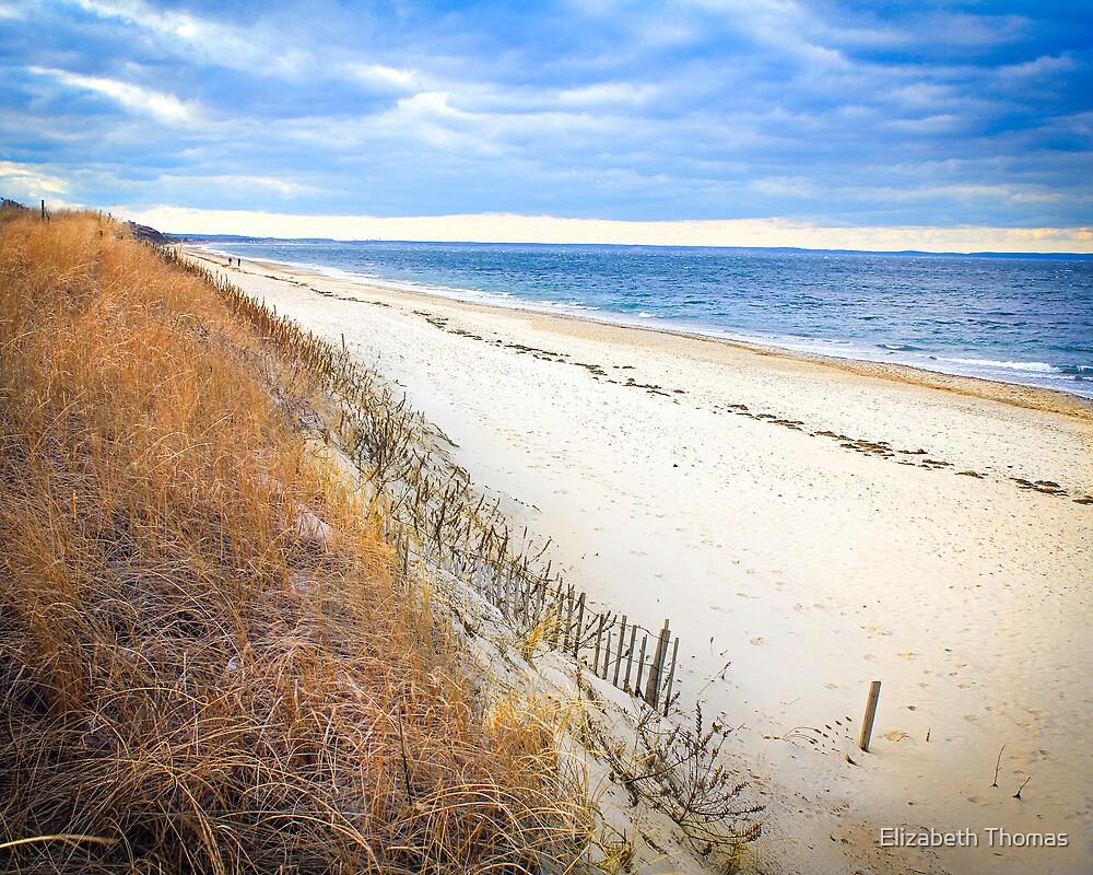 Sandy Neck Beach by Elizabeth Thomas
