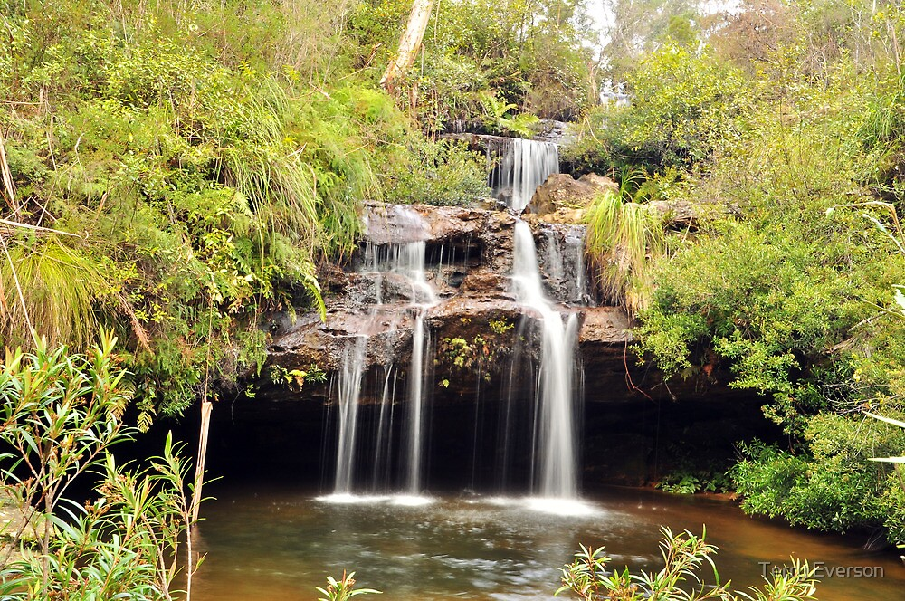 Frederica Falls by Terry Everson