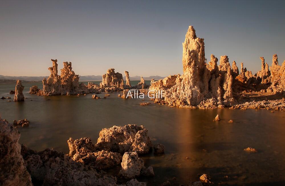 Mono Lake by Alla Gill