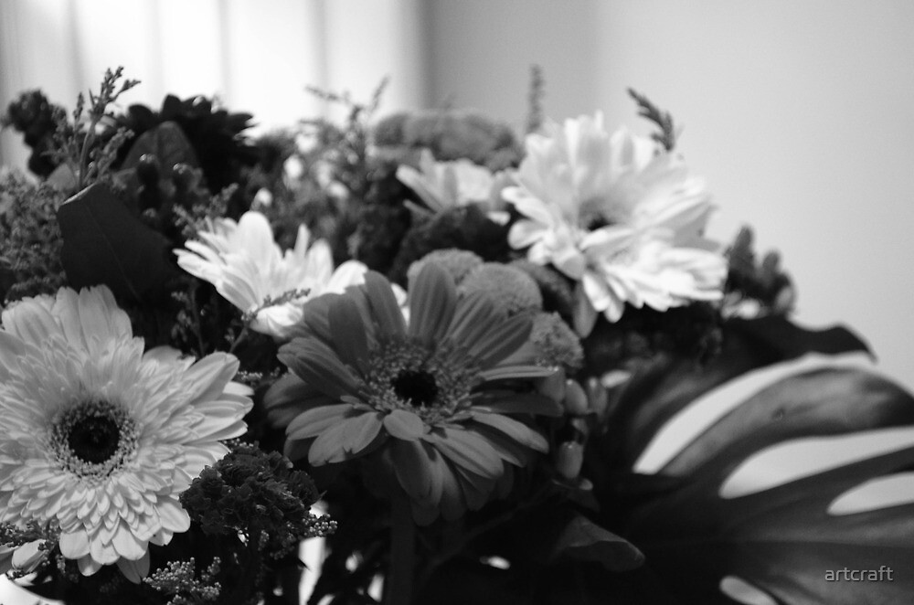 Flowers - Black & White ! by artcraft