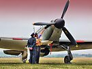 Hurricane - Duxford Flying Legends 2013 by Colin  Williams Photography