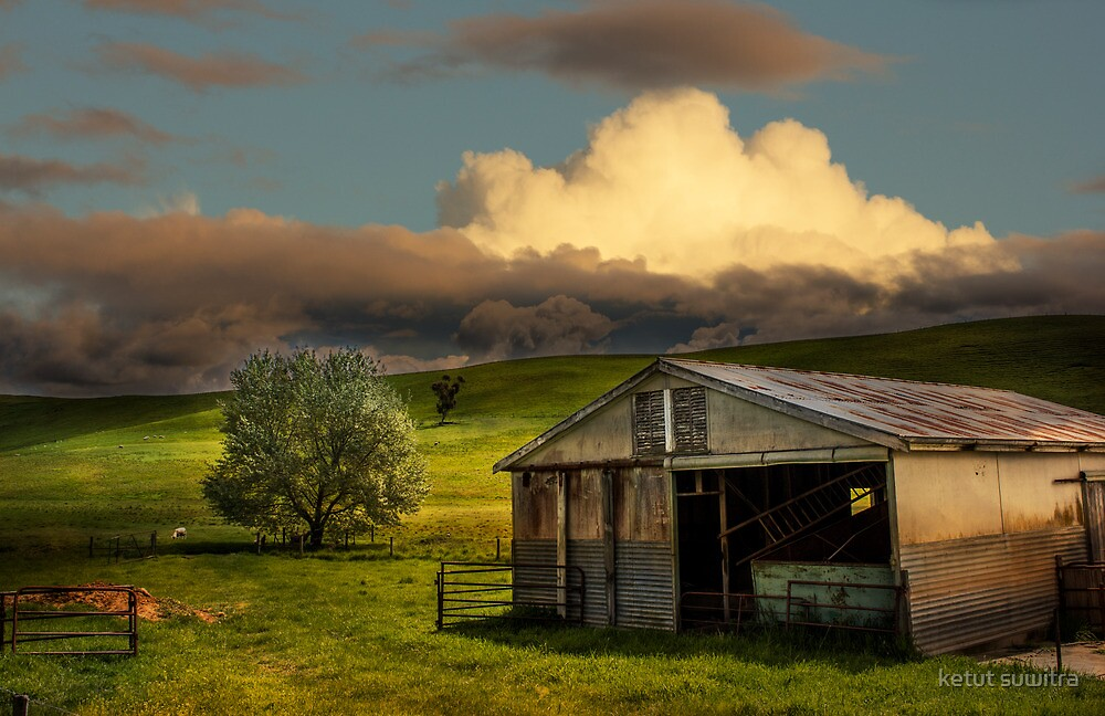 the shed by ketut suwitra