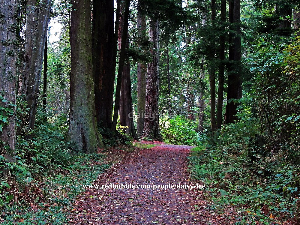 Stanley Park Vancouver, Canada 2 by daisy-lee