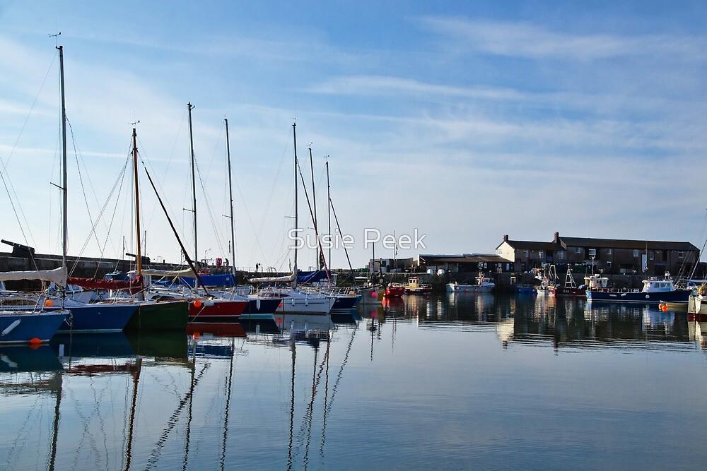 Lyme Regis Harbour by Susie Peek