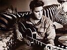 I'm Busy Elvis! by Simon Groves