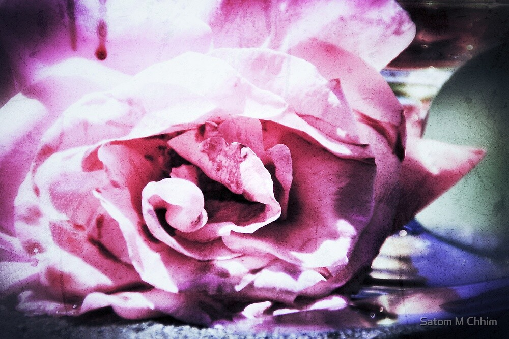 Damaged Petals by Satom M Chhim