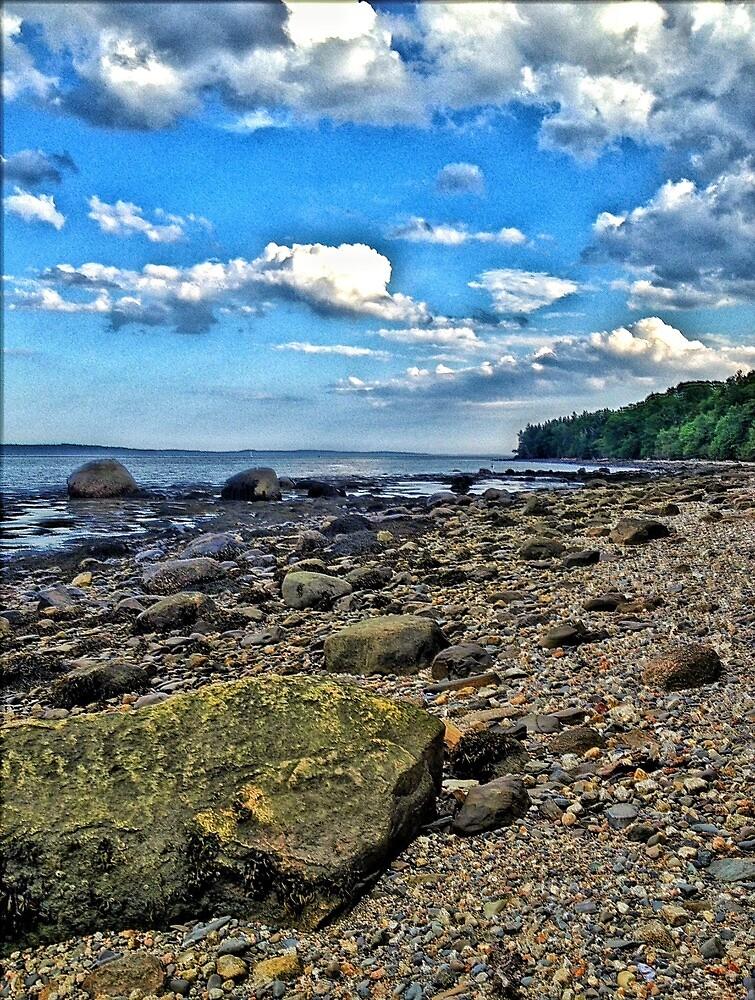 Sears Island, Maine by fauselr