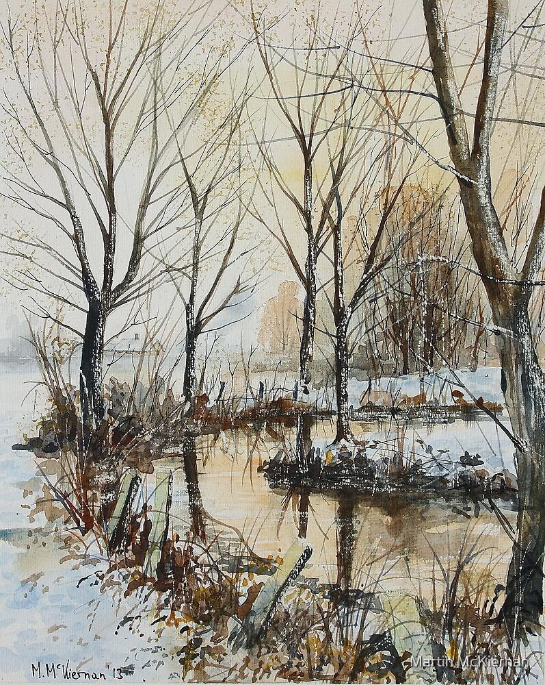Winter Stream by Martin McKiernan