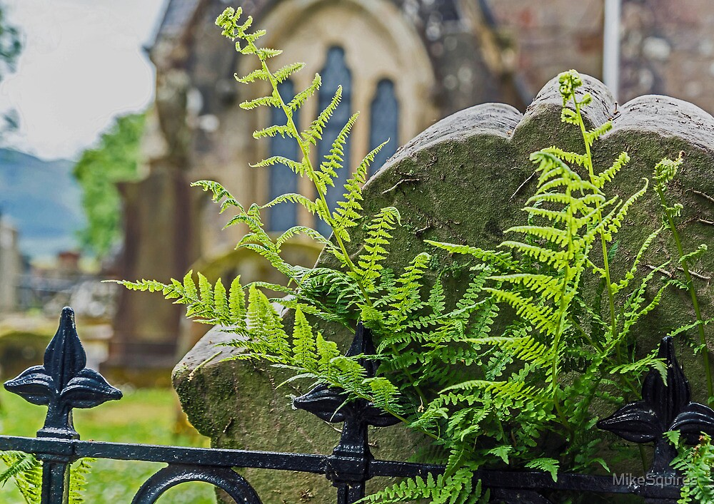 Gravestone with Fern by MikeSquires