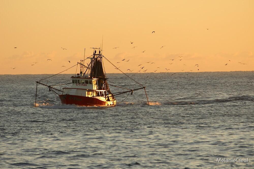 Gold Coast Seaway - Trawler Boat  by MelanieCleal
