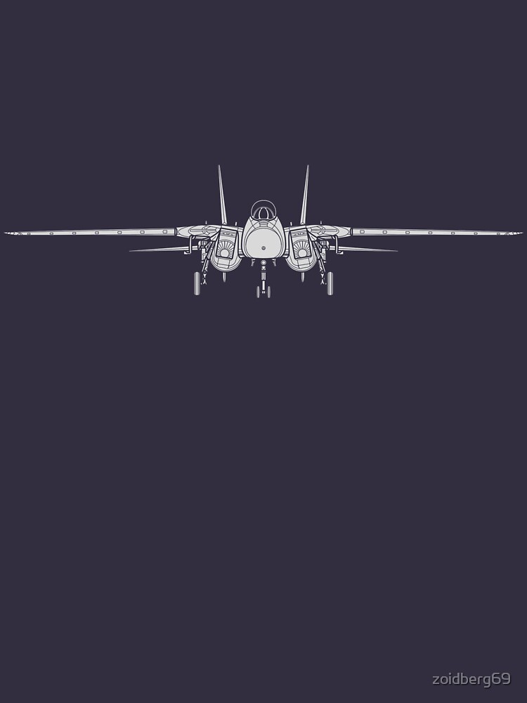 Grumman F-14 Tomcat Front View by zoidberg69