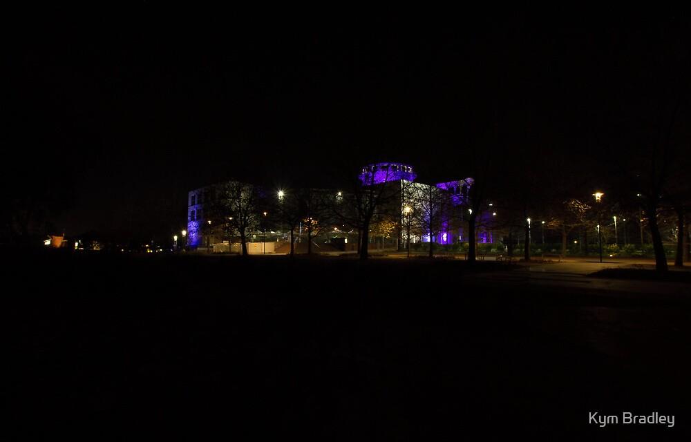 Purple Mood Questacon Canberra Australia  by Kym Bradley