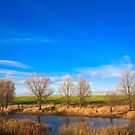 Autumn landscape in sunny day by GrishkaBruev