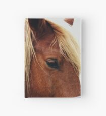 Diary Entry: Quarter Horse  Hardcover Journal