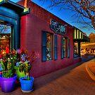 Sedona Eye Candy by K D Graves Photography