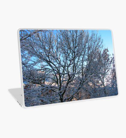 Winter Sunshine Laptop Folie