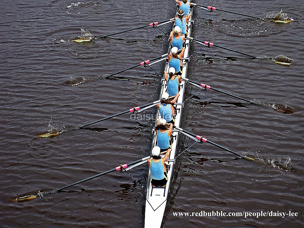 Rowers 1 by daisy-lee