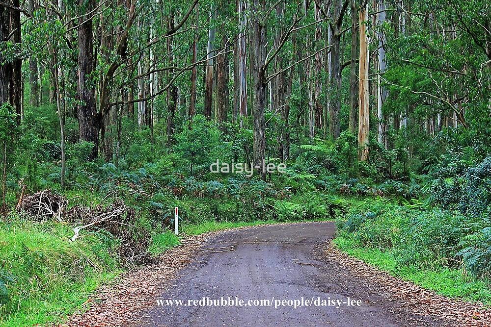 Bush road 1 by daisy-lee